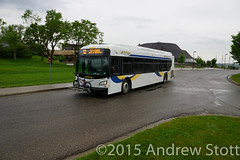 173 at UofL (awstott) Tags: new bus flyer transit lethbridge newflyer xde40