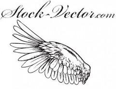 wing free vector (movieboke) Tags: wing batwings fairywings goldenwings phoenixwings vectorwingai wingvector wingseps angelwingsai wingai