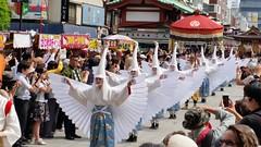 白鷺の舞 Shirasagi no mai (ɑlɑstɑr ó clɑonɑ́ın) Tags: japan no mai 日本 nippon asakusa japon sanjamatsuri japón 三社祭 観光 shirasagi 白鷺の舞 japan2015 大行列 daigyōretsu