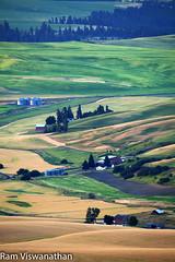 Palouse Steptoe vertical barns (ramviswanathan) Tags: landscape photos wheatfields palouse steptoe