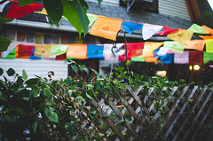 / bloomington / (aubreyrose) Tags: sunset fence garden outside restaurant colorful indiana flags bloomington 4thstreet fourthstreet littletibet