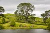 The shire (nishantdhumane) Tags: newzealand summer spring landscape colorful cloudsstormssunsetssunrises clouds lordoftherings hobbiton outdoor village shire lake nature