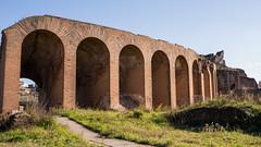 Arches of the Amphitheatre (silverfox_hwz) Tags: campania capua santamariacapuavetere amphitheatre anfiteatro ancientcapua gladiator gladiatormuseum