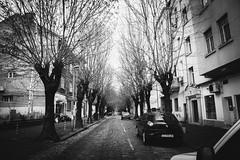 IMG_6966 (YuliaStarikova) Tags: balkanbustour europe balkans bybus walk world trip kagyu architecture street sofia bulgari софия болгария