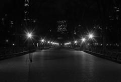 Light the way (steveedreff) Tags: path centralpark lights lamps lamppost