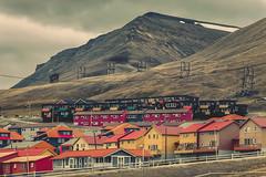 _MG_6359 (gaujourfrancoise) Tags: arctic arctique svalbard norway norvège gaujour northpole pôlenord longyearbyen spitsberg spitzberg