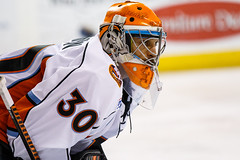 "Missouri Mavericks vs. Quad City Mallards, December 31, 2016, Silverstein Eye Centers Arena, Independence, Missouri.  Photo: John Howe / Howe Creative Photography • <a style=""font-size:0.8em;"" href=""http://www.flickr.com/photos/134016632@N02/31972630401/"" target=""_blank"">View on Flickr</a>"