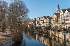 Platanenallee und Neckarfront (stefanheymann) Tags: tübingen neckarfront platanenallee hölderlinturm d800 2470vr winter