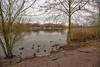 IMG_1077-Edit (brianfagan) Tags: 7d brianfagan ursula canon country eos nottingham nottinghamshire park rushcliffe uk ruddington england unitedkingdom