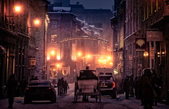 romancing the snow (JimfromCanada) Tags: buggy love romance winter snow city street night mist montreal quebec canada cold outdoor shop horseandbuggy horse ride light evening old oldmontreal vieuxmontreal carriage horsedrawncarriage
