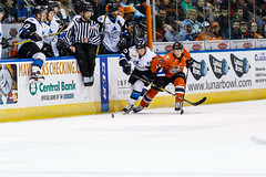 "Missouri Mavericks vs. Wichita Thunder, February 3, 2017, Silverstein Eye Centers Arena, Independence, Missouri.  Photo: John Howe / Howe Creative Photography • <a style=""font-size:0.8em;"" href=""http://www.flickr.com/photos/134016632@N02/32561325982/"" target=""_blank"">View on Flickr</a>"