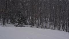 Backyard Backflips (clarkschmitt) Tags: skiing backcountry backflip tricks bolton vermont clarkschmitt