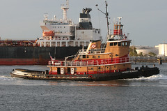 ZACHERY REINAUER & UACC IBN AL HAITHAM in New York/New Jersey, October, 2016 (Tom Turner - SeaTeamImages / AirTeamImages) Tags: uacc zacheryreinauer tug tugboat water waterway channel spot spotting tomturner tanker docked ibnalhaitham uaccibnalhaitham statenisland newyork nyc newjersey gardenstate bayonne unitedstates bigapple usa marine maritime pony port harbor harbour transport transportation kvk killvankull