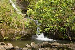 Kauai2015-088.jpg (Michael_Cline) Tags: kauai kalalau napali hanakapiai hanakapiaifalls