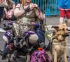 DUBLIN 2015 LGBTQ PRIDE FESTIVAL [PREPARING FOR THE PARADE] REF-106210