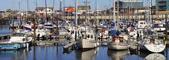 Amble Marina Panorama (kendo1938) Tags: uk boats northumberland yachts fishingboats vessels amble coquet ambleharbour fishingvessels amblebythesea rivercoquet amblemarina