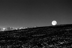 20091203-SalineValley5084.jpg (LucaFoto!) Tags: california ca camping blackandwhite bw moon nature monochrome day doug hill deathvalley salinevalley slope moonset visionquest racetrackplaya greyscale lightroom lr3 lucafoto salinesprings