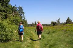 best-of-wandern_der-goldene-pfad_Preiselbeere-Pfad_Tag2