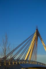 Beautiful Bridge 01 (viticasas) Tags: bridge puente cable tensores