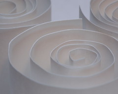 Paper rolls (Stanley Wood) Tags: macromonday justwhitepaper paper white roll