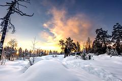 Taking a walk (Stockografie) Tags: f fujifilm longexposure sweden waterfall xt10 xtrans xc1650ii
