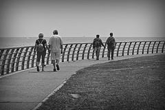 One Way (Wal CanonEOS) Tags: one way oneway un camino uncamino riodelaplata river rio paseo dia day agua water gente people parejas caminando walking walk caminar argentina argentinabsas bsas buenosaires caba capitalfederal ciudadautonoma ciudaddebuenosaires parquedelosniños park parque costanera costaneracaba costaneranorte canon eos rebelt3 canoneosrebelt3 calle callejeando street streets streetsbw blancoynegro byn blackandwhite bw blanco y negro monocromatico monocromatic monocromo hdr hdrbw hdrcandid candid candidstreet candidbw calles strange streetshdr foto flickr flickrargentina fotocallejera fotografia photo photography alairelibre