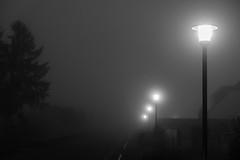 Fog (pi3rreo) Tags: fog brouillard nord fujinon fujifilm xe2 extérieur city urban urbain ville noiretblanc black white light lumière low key lampadaire matin morning