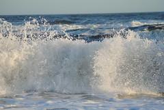 winter (sarahk5446) Tags: gulfofmexico gulfcoast gulf beach beautiful blue billabong summer spring sky sand swim sea surf sun shore salt seashore smile sunrise swiming salty shores sunshine southernliving