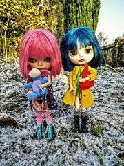 My colorful winter with Shay&Herzchen