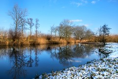 Winter reflection (marielledevalk) Tags: reflection outdoor lake ven trees winter snow landscape blue grass field holland dutch weather cold