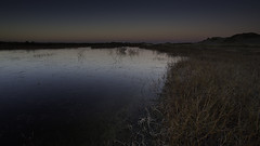 No. 1108 Dawn in the marsh (H-L-Andersen) Tags: hlandersen 6d canon6d canoneos6d manfrotto lee leefilters morning frostetmorning winter marsh lake water nature landoflight landscape landscapes outdoor outside cold frost frozen ice glow denmark skagen råbjergmile råbjerg