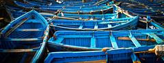 Blue Boats (Jan Herremans) Tags: maroc morocco essaouira africa fishing blue boats industry janherremans