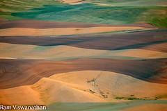 Design Patterns in Wheat fields (ramviswanathan) Tags: landscape photos wheatfields palouse steptoe