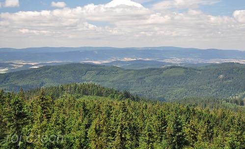 Velká Deštná 1115 m