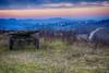Fino al prossimo tramonto... (Gianni Armano) Tags: fino al prossimo tramomto colli tortonesi alessandria piemonte italia vecchio carro strada paese colline cielo paesaggio landscape country sunset sky hill wagon foto gianni armano photo flickr