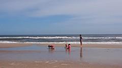 PA150773 (photos-by-sherm) Tags: carolina beach nc north atlantic ocean fall sunbathers boardwalk