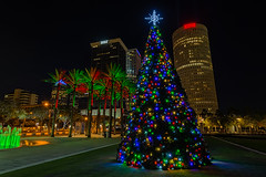 Curtis Hixon Christmas Tree Medium (Photomatt28) Tags: christmastree curtishixonpark florida tampa