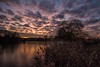 Magenta sky (James Waghorn) Tags: sigma1020f456 ice d7100 tree winter maidstone reflections water sunset lake kent motepark clouds nikon england