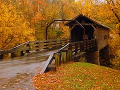 Harrisburg Covered Bridge - Explore #106, 12-18-16 (stephaniepc) Tags: harrisburgcoveredbridge harrisburgroad sevierville tennessee harrisburg covered bridge road fall autumn smoky mountains smokies explore