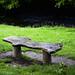 Lonely Bench in Rivelin Valley Sheffield