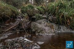 Harz 2016 III (Joon Stemmermann) Tags: harz water atumn trees garmany stone waterfall nationalpark montains green nikon tokina d3300