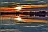 Dorada luz, hermoso momento. (Jose Roldan Garcia) Tags: laguna libre libertad luz atardecer agua aire colores cielo ocaso otoño toledo dorado reflejos puesta sol