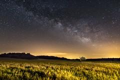 June night (Victor Francés) Tags: canon 60d tokina 1116mm lallumdelanit night nightfoto nocturnal milkyway field calm quiet stars serenidad