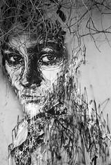 Art & nature combined (tim jg photography) Tags: art painted graffiti woman face pretty monmartre paris capital capitalcity natureandart nature streetart blacl white blackandwhite eyes shrubs shrubbery staring foliage artandnature