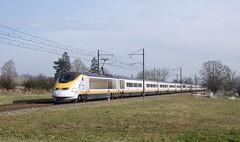 TMST 3213/14 (SylvainBouard) Tags: eurostar tmst sncf train