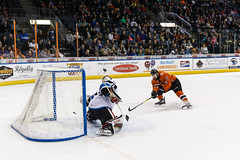 "Missouri Mavericks vs. Wichita Thunder, February 3, 2017, Silverstein Eye Centers Arena, Independence, Missouri.  Photo: John Howe / Howe Creative Photography • <a style=""font-size:0.8em;"" href=""http://www.flickr.com/photos/134016632@N02/32561318502/"" target=""_blank"">View on Flickr</a>"