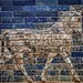 An Auroch symbol of Adad (Hadad) storm and rain god of ancient Mesopotamian religions on the Ishtar Gate of Babylon reconstructed with original bricks at the Pergamon Museum in Berlin 575 BCE (2)