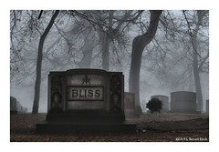 Bliss (TooLoose-LeTrek) Tags: cemetery fog haze mist bliss mysterious macabre