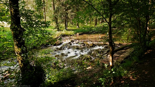 Meditation at the forest stream/Meditation am Waldbach