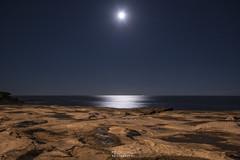 moon light (goranhas) Tags: